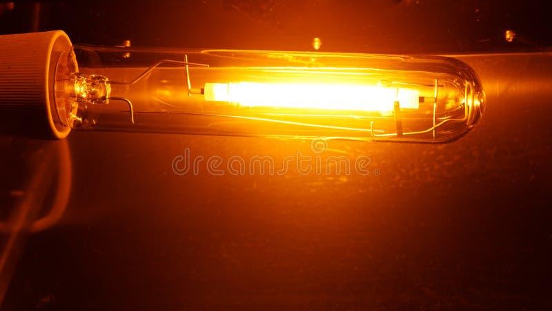 Hochdruckorange Licht der Natriumdampflampe HPS lizenzfreie stockbilder