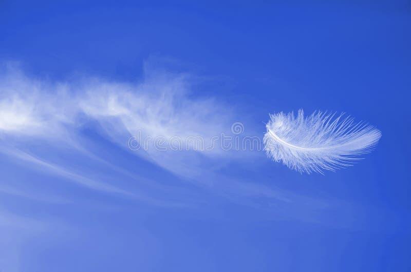 Hochfliegender Flug der weißen flaumigen Feder am blauen sonnigen Himmel stockfoto