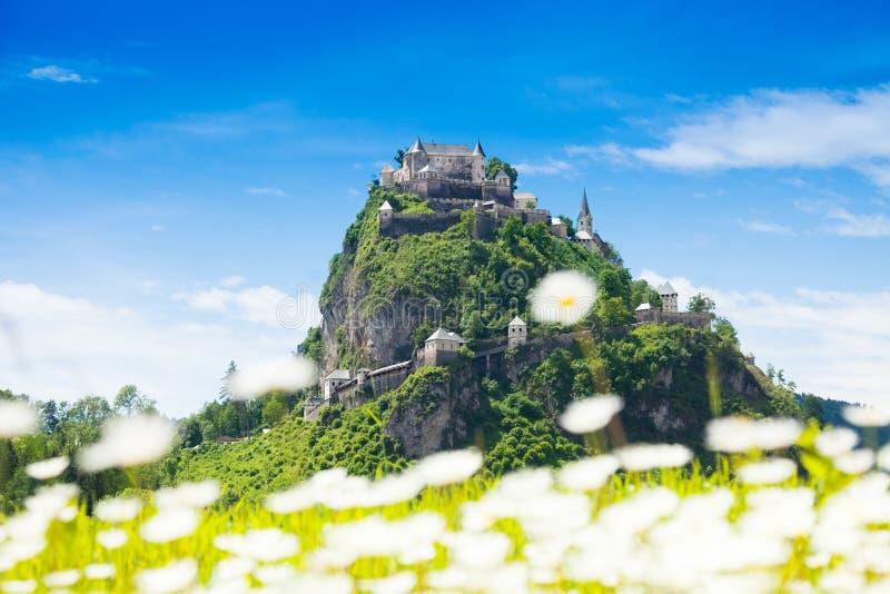 Hochosterwitz castle behind chamomile flowers royalty free stock image