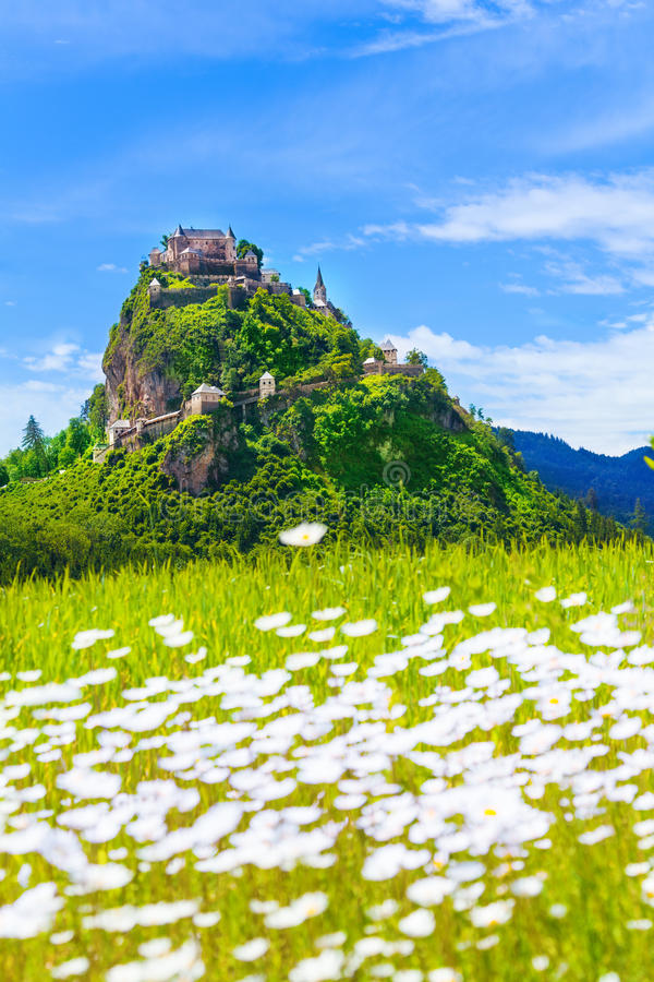 Hochosterwitz castle and chamomile field stock images