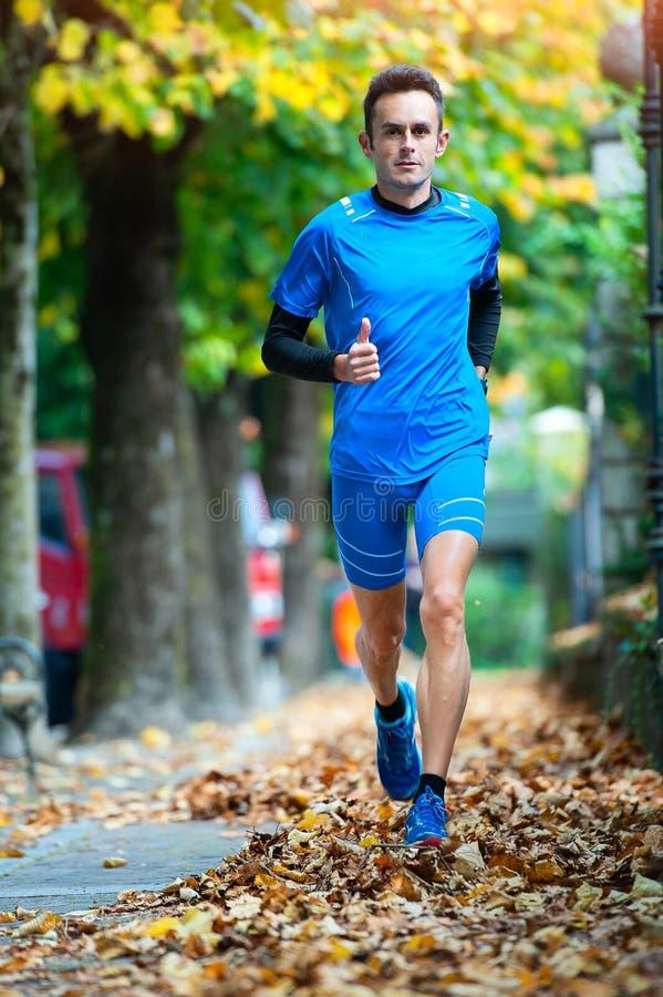 Hochrangiger Querfeldeinläufer während eines Herbsttraining sessio lizenzfreie stockfotografie