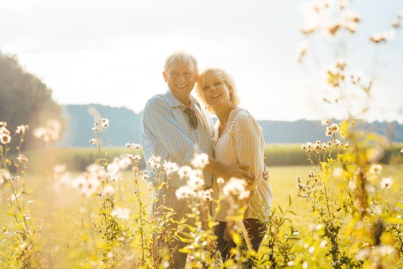 Hochrangiges Paar auf einer sonnenbeleuchteten Wiese, die sich gegenseitig umarmen lizenzfreies stockfoto