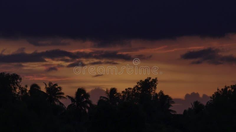 Hochroter Himmel und forrest am Abend lizenzfreie stockfotos