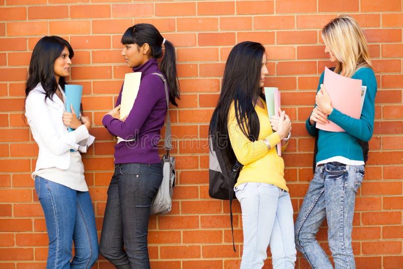 Hochschulfreundplaudern stockbilder
