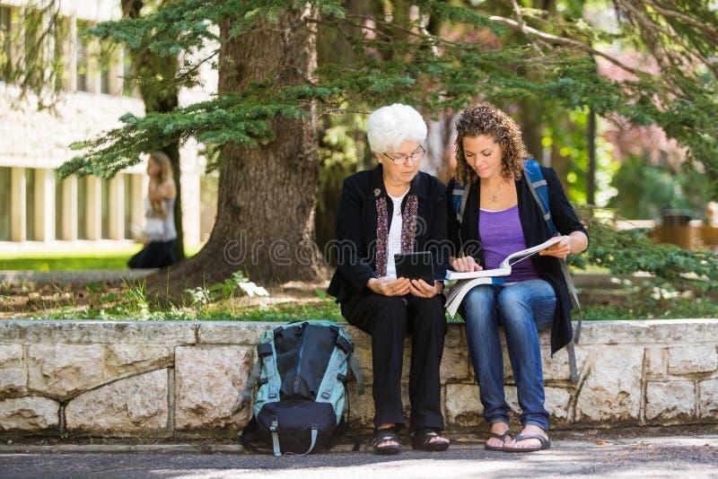 Hochschulprofessor Assisting Student stockfoto