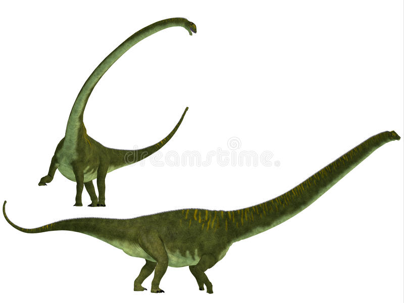 Hochuanensis do Mamenchisaurus ilustração royalty free