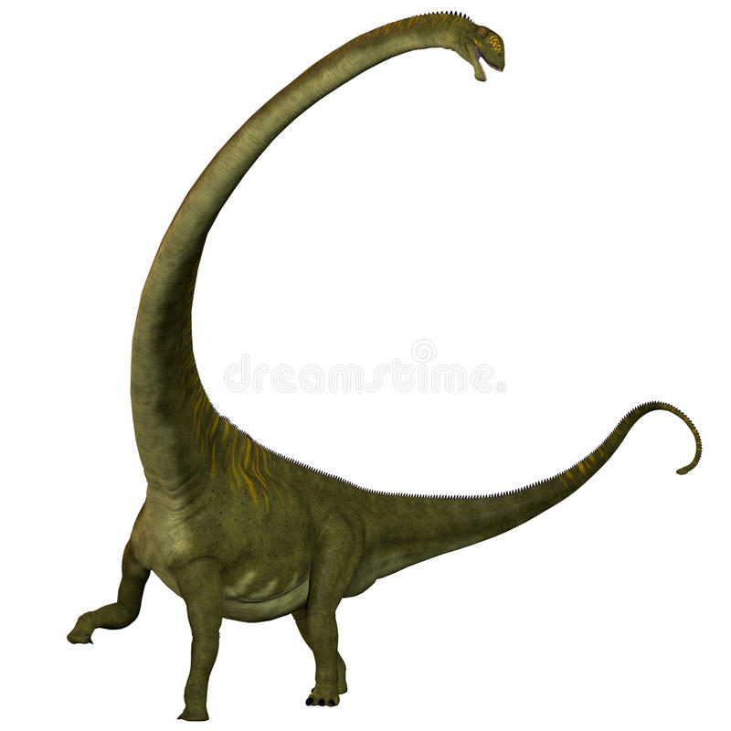 Hochuanensis do Mamenchisaurus no branco ilustração do vetor