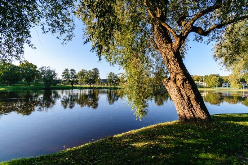 Download Hochwasserniveau Im Fluss Gauja, Nahe Valmiera-Stadt In Lettland S Stockbild - Bild von nantes, kreuz: 106800543