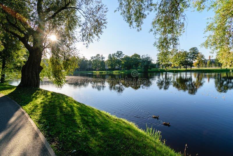 Download Hochwasserniveau Im Fluss Gauja, Nahe Valmiera-Stadt In Lettland S Stockbild - Bild von sandstein, klippe: 106800597