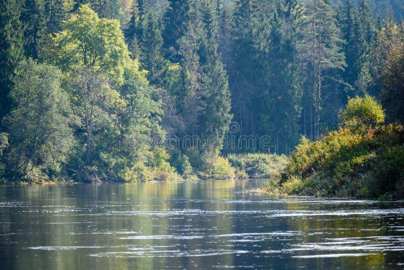 Download Hochwasserniveau Im Fluss Gauja, Nahe Valmiera-Stadt In Lettland S Stockfoto - Bild von symbol, höhle: 106800850