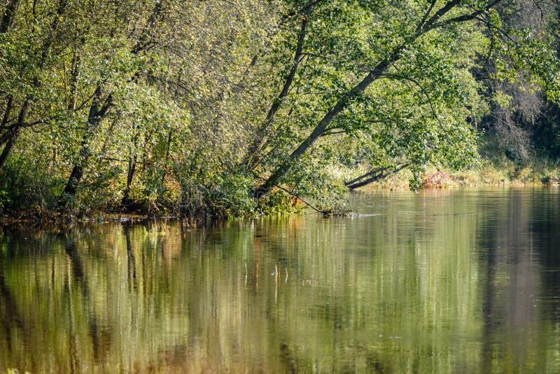 Download Hochwasserniveau Im Fluss Gauja, Nahe Valmiera-Stadt In Lettland S Stockbild - Bild von remains, sand: 106801051