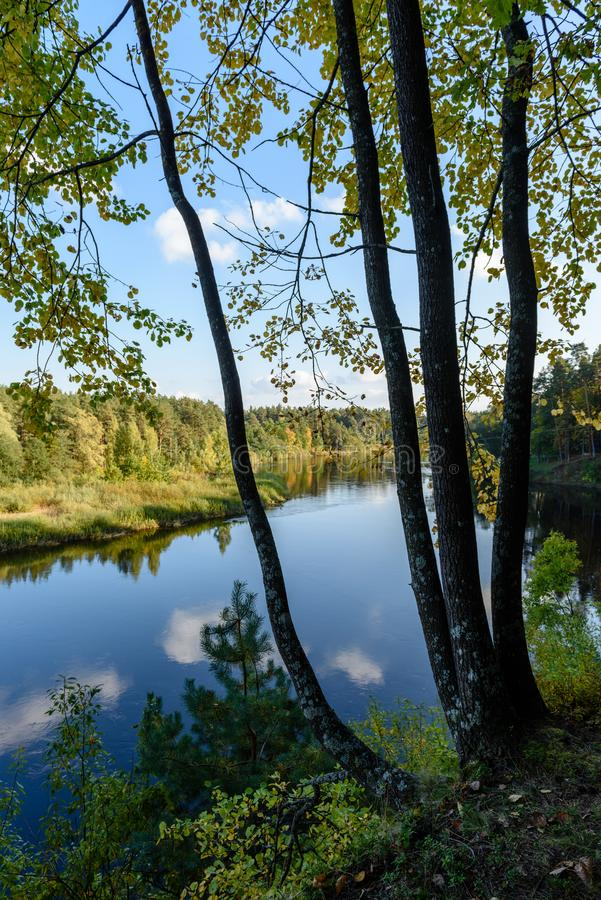 Download Hochwasserniveau Im Fluss Gauja, Nahe Valmiera-Stadt In Lettland S Stockbild - Bild von remains, ablage: 106801069