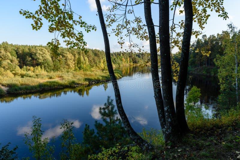 Download Hochwasserniveau Im Fluss Gauja, Nahe Valmiera-Stadt In Lettland S Stockfoto - Bild von draußen, höhle: 106801256