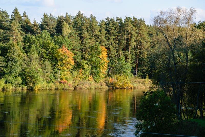 Download Hochwasserniveau Im Fluss Gauja, Nahe Valmiera-Stadt In Lettland S Stockbild - Bild von teutonic, ablage: 106801263