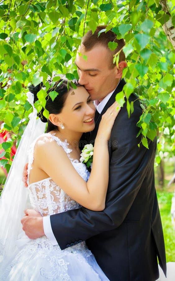 Hochzeit geschossen von der Braut und vom Bräutigam lizenzfreie stockbilder