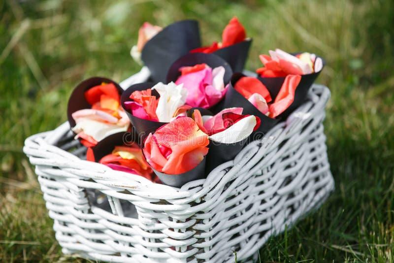 hochzeit zeremonie Auf grünem Gras gibt es Umschläge mit den rosafarbenen Blumenblättern für Hochzeitszeremonie lizenzfreie stockfotografie