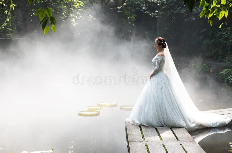 Hochzeits-Fotos der schönen Braut lizenzfreie stockbilder