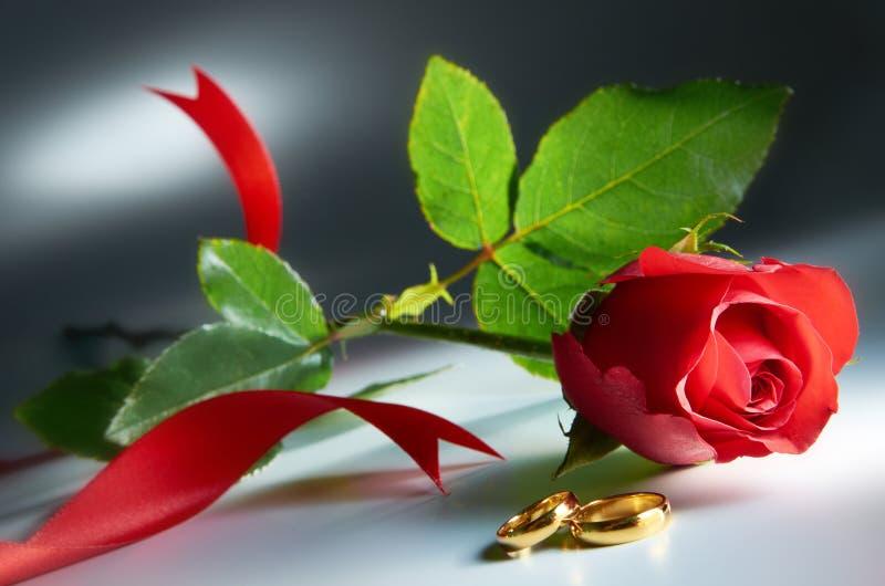 Hochzeits-Ring mit Rose lizenzfreie stockfotografie