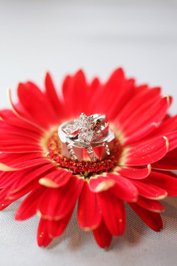 Hochzeits-Ringe auf Blume stockbild