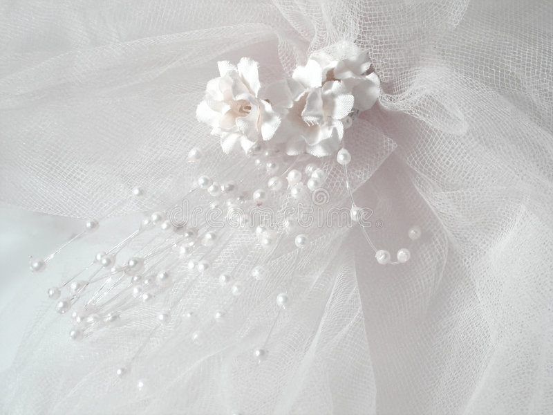 Hochzeits-Schleier lizenzfreie stockfotos