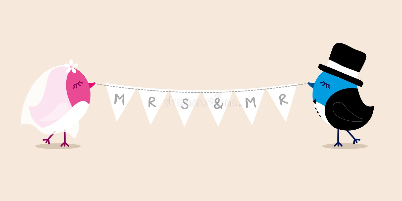 Hochzeits-Vögel Braut und Bräutigam-Holding Bunting FRAU HERR stock abbildung