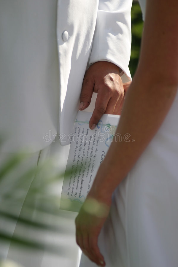 Hochzeits-Versprechen lizenzfreie stockbilder