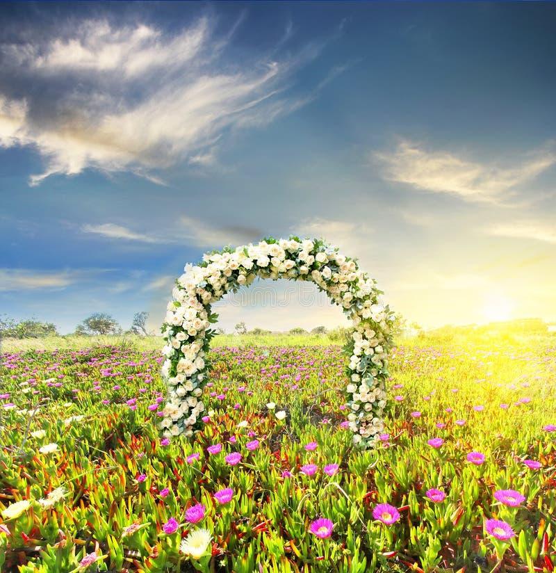 Hochzeitsbogen verziert mit Blumen von weißen Rosen am Sonnenuntergangfeld lizenzfreies stockbild