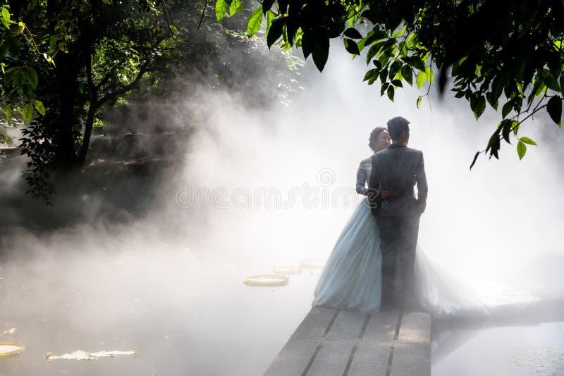 Hochzeitsfotos im Nebel stockbilder