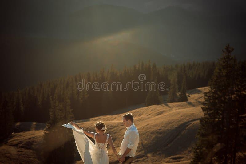 Hochzeitspaaraufstellung schöne Berge auf Hintergrund stockfotografie