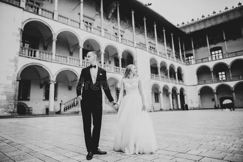 Hochzeitspaarbraut- und -br?utigamh?ndchenhalten lizenzfreie stockbilder
