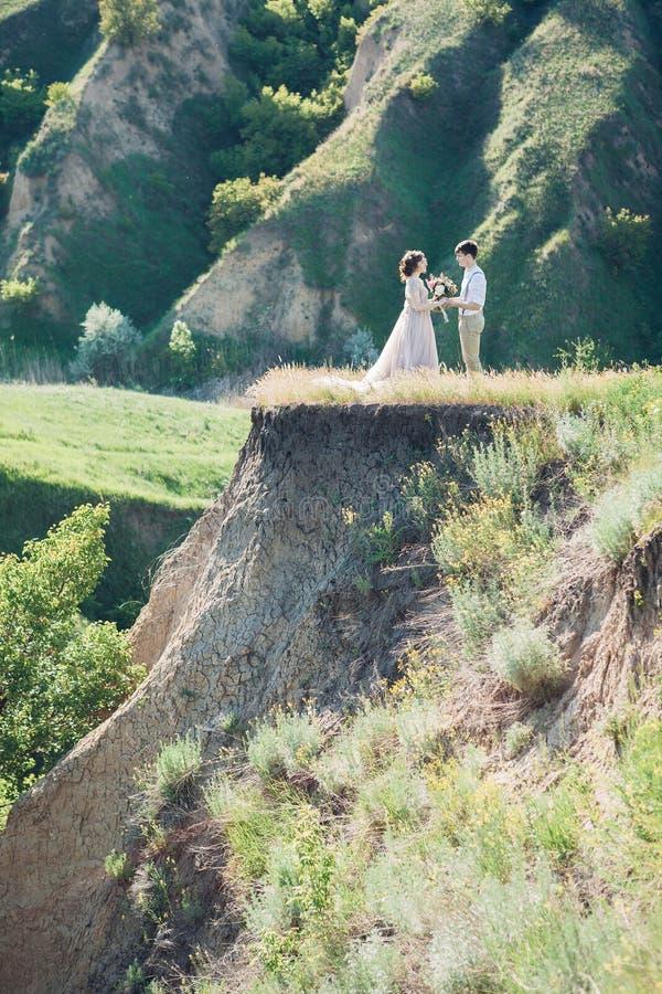 Hochzeitspaare auf Natur Braut und Bräutigam, die an der Hochzeit umarmen lizenzfreies stockbild