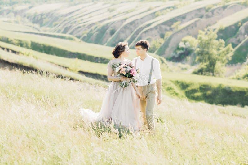 Hochzeitspaare auf Natur Braut und Bräutigam, die an der Hochzeit umarmen lizenzfreie stockbilder