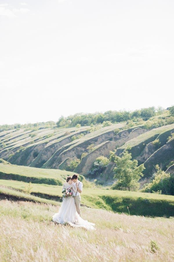 Hochzeitspaare auf Natur Braut und Bräutigam, die an der Hochzeit umarmen stockbild