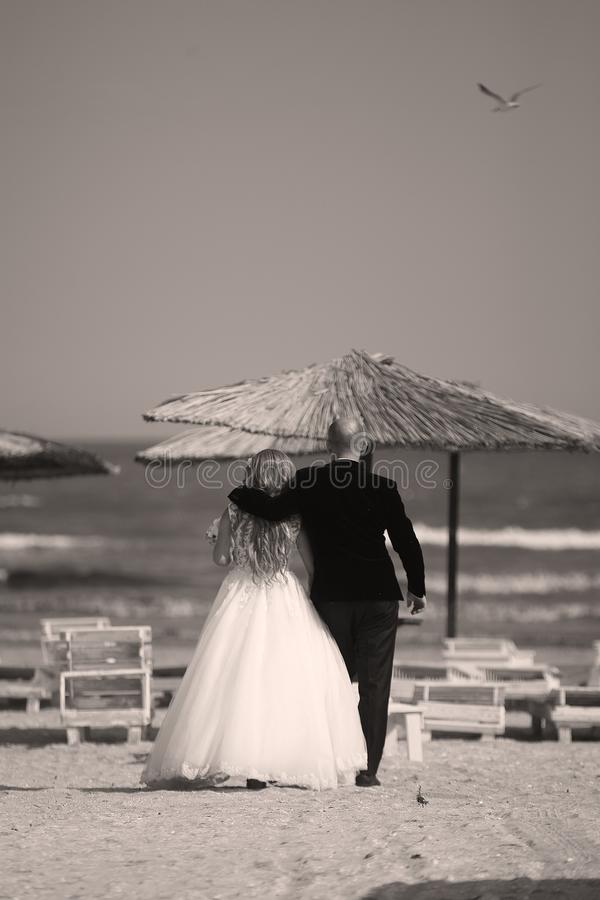 Hochzeitspaare, die auf den Strand, Rückseite gehen lizenzfreie stockfotografie