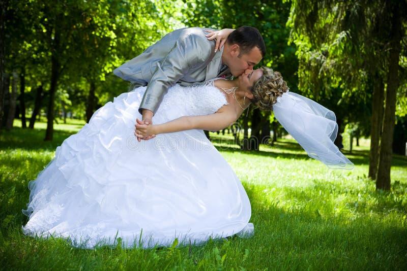 Hochzeitspaarkuß im Park stockfotografie