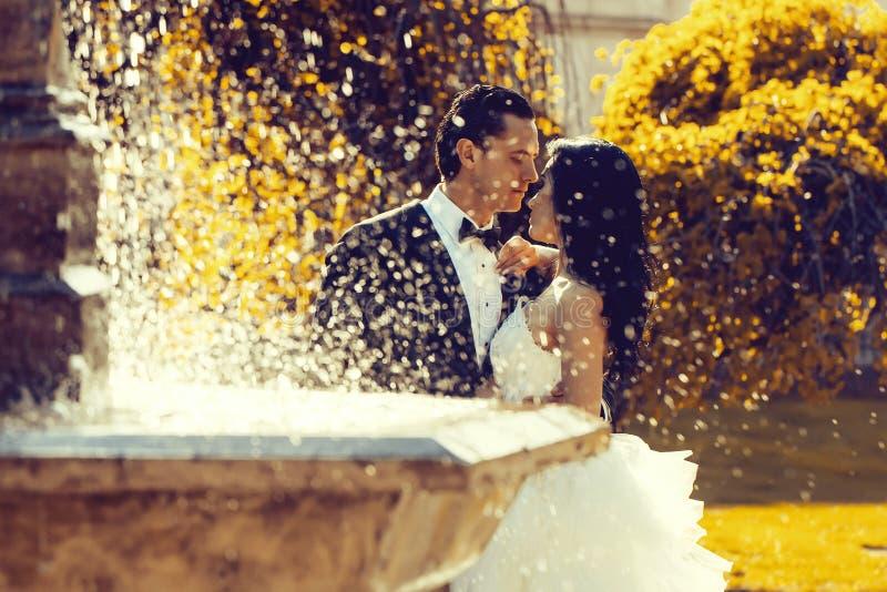 Hochzeitspaarkuß nahe Brunnenwasser lizenzfreie stockfotografie
