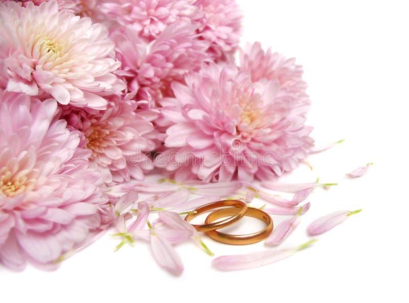 Hochzeitsringe lizenzfreies stockbild