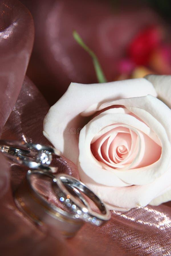 Hochzeitsringe in einer Rose lizenzfreie stockbilder