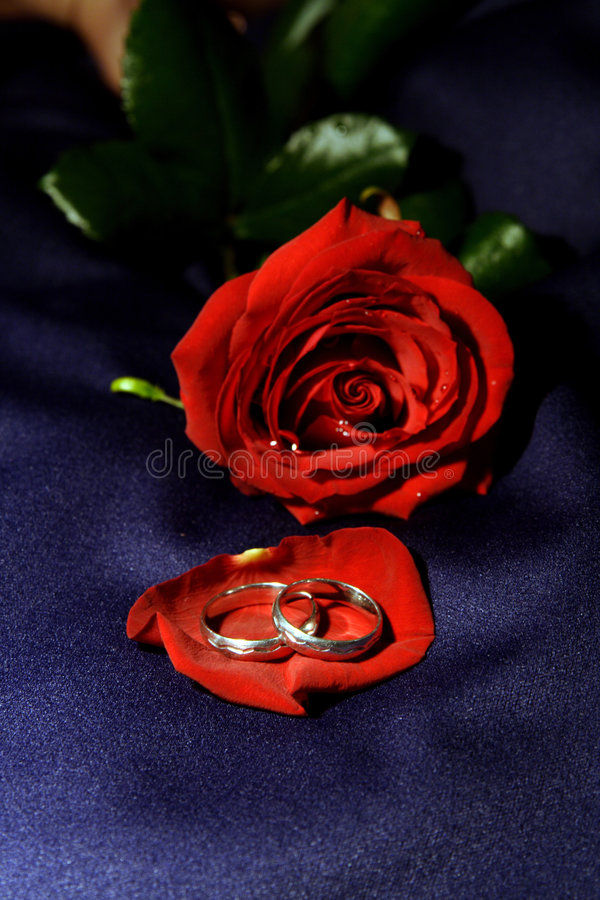 Hochzeitsringe II stockfoto