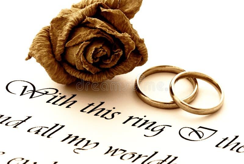 Hochzeitsringe, -rose und -versprechen lizenzfreie stockfotos