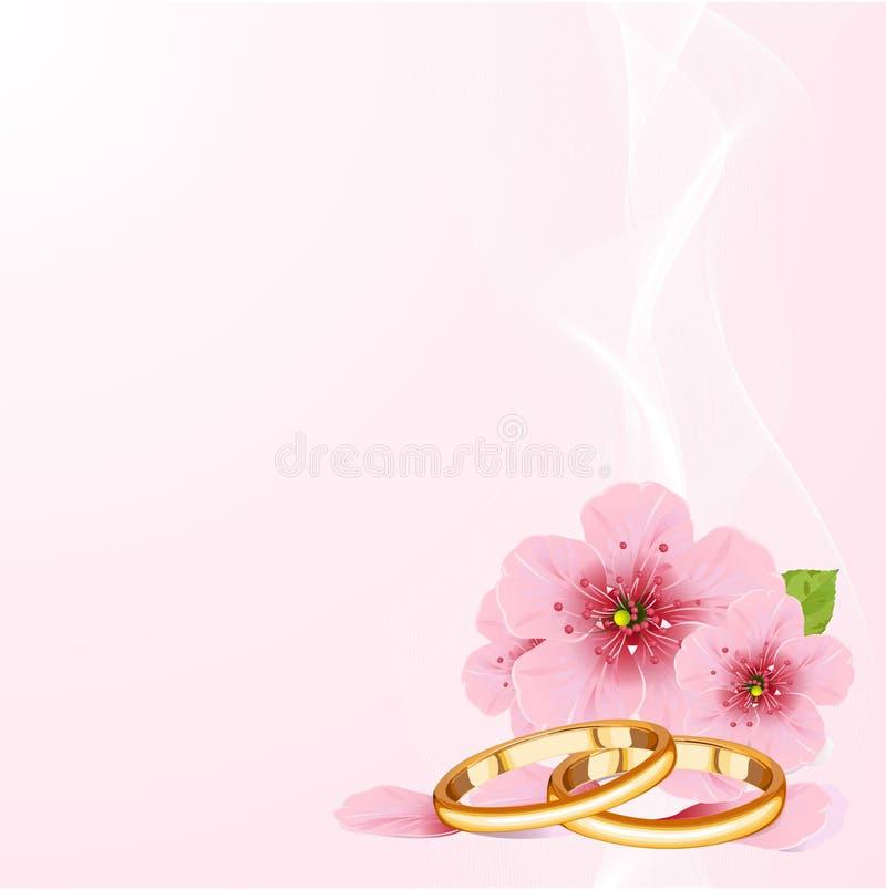 Hochzeitsringe und Kirschblüte lizenzfreie abbildung