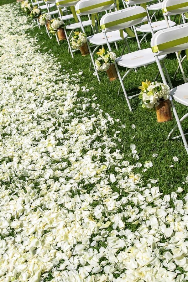 Hochzeitsstuhl Stockfoto
