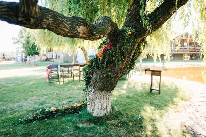 Hochzeitszeremoniebereich, Bogenstuhldekor stockbilder