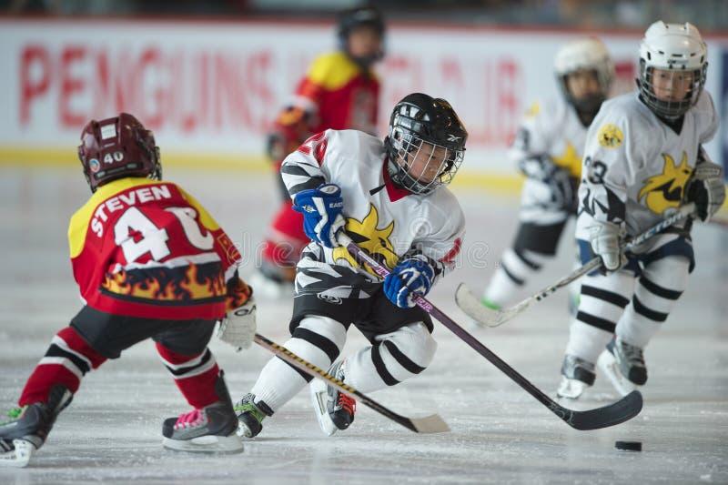 Hockey 2010 5s - 2 photos stock