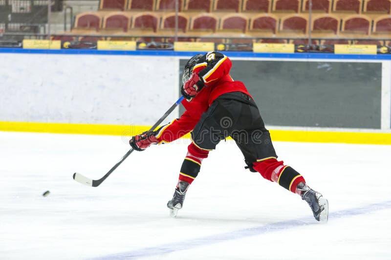 hockey photos libres de droits