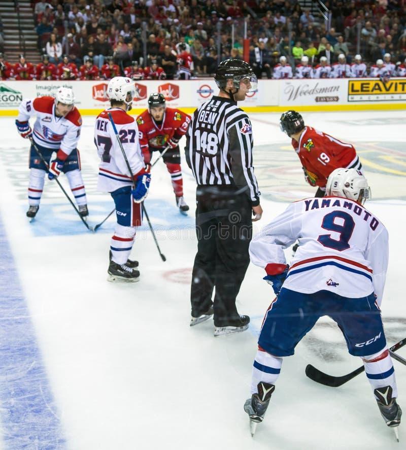 Hockey de Winterhawks del descenso del duende malicioso imágenes de archivo libres de regalías