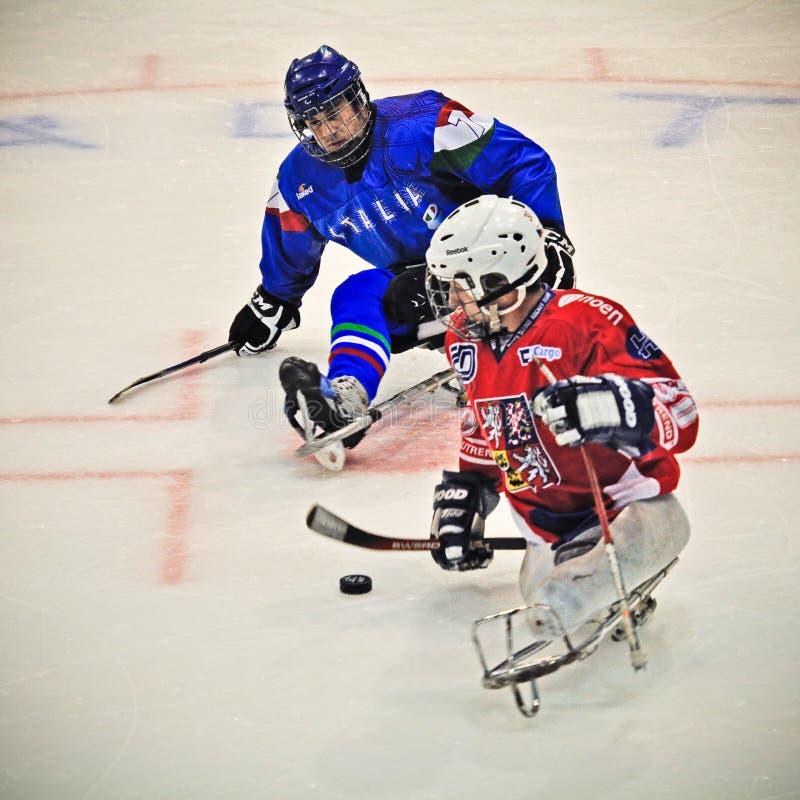 Hockey del trineo del hielo imagen de archivo