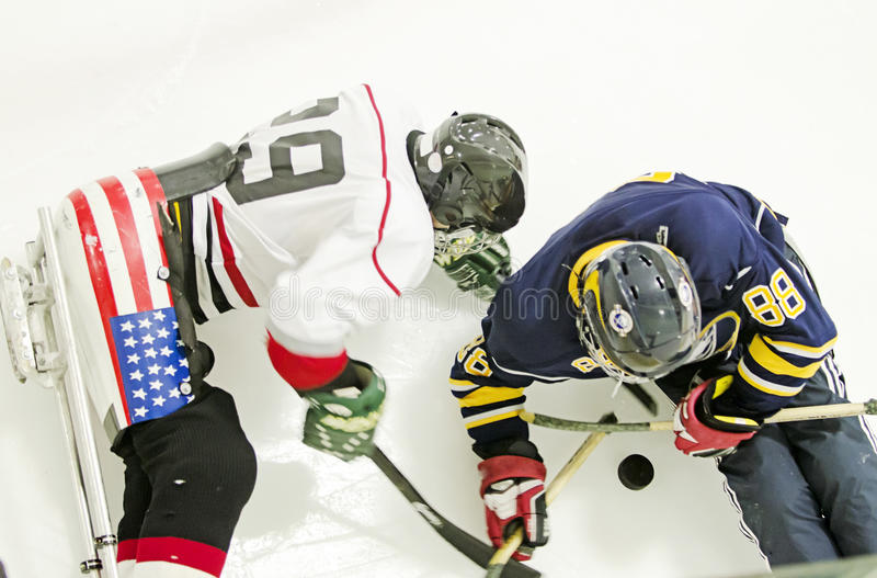 Hockey del trineo del hielo imagenes de archivo