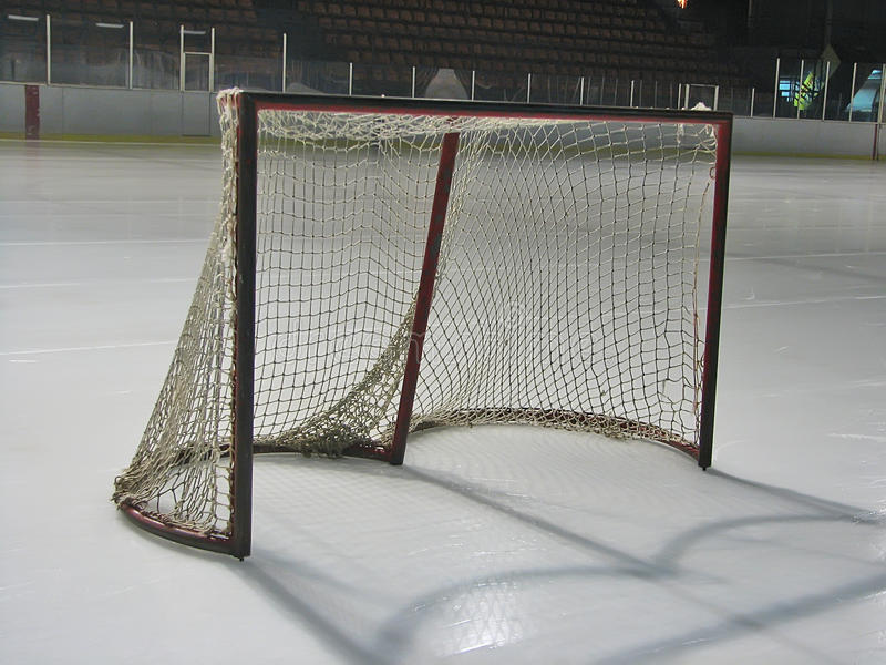 Download Hockey goal stock photo. Image of blocker, block, cold - 12233978