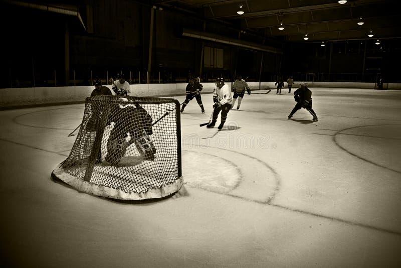 Download Hockey net stock image. Image of athlete, play, goal, saving - 5730551